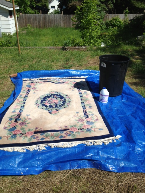 Do-it-yourself: Overdyed Rug - Turn of the Century Blog